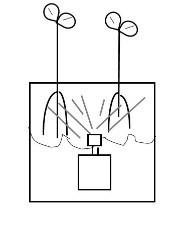 Aeroponic gardening system
