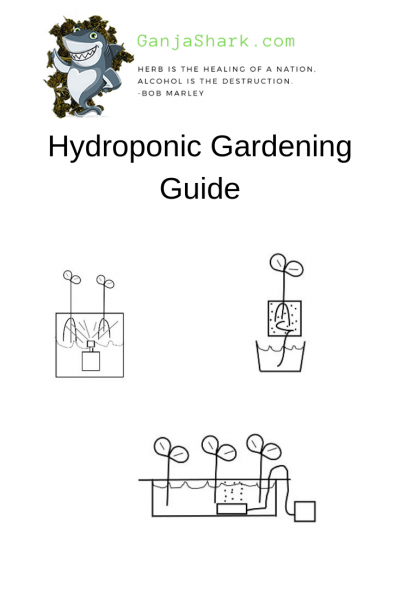 Hydroponic Light System Guide