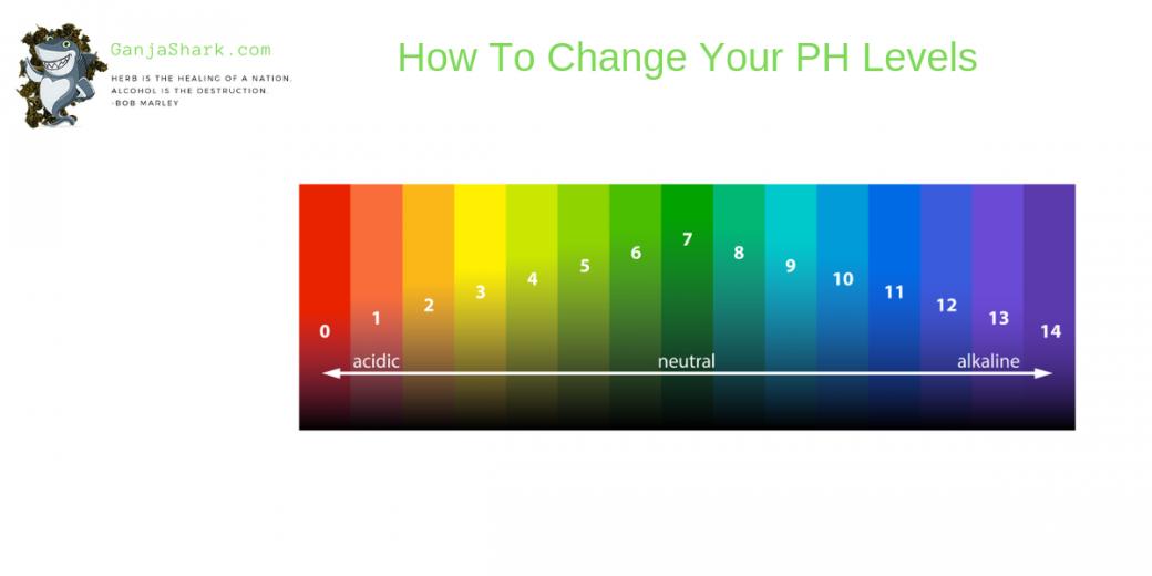 PH Soil Levels
