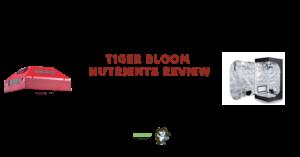 Farm Tiger Bloom Review